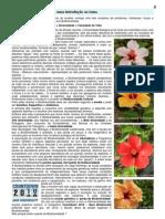 Biodiversidade_Armeria 14