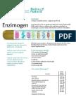 Prospect Enzimogen