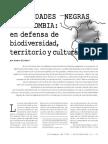 grain-881-comunidades-negras-de-colombia-en-defensa-de-biodiversidad-territorio-y-cultura.pdf