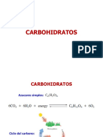 10 Carbohidratos