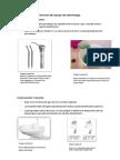 Normas Del Equipo de Odontología