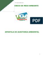 Apostila Auditoria Ambiental-2010