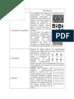 Salvatierra_Cuadro Reordenado de Formas de Escritura