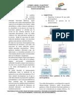 Celdas Electroquímicas y Potenciometria Andres