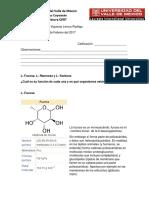 Tarea No. 3 L Fucosa LRamnosa y L Sorbosa