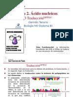 gtp_t2._Ácidos_nucleicos__3ªparte_traducción__2016-18