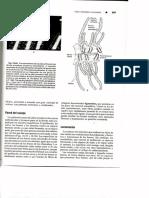 img053 (2).pdf