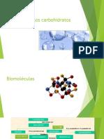 Biomoleculas Pau