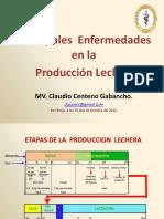 2012 Principales Enfermedades Produccion Lechera