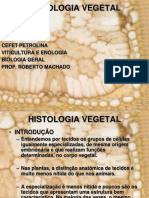 Aula 1 - Histologia Vegetal