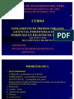 SANEAMIENTO + LICENCIA + INDEPENDIZACIONES + REGISTROS DE PREDIOS