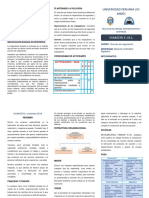 IDENTIFICAR CONFLICTO triptico.docx