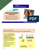 Orientaciones Generales Planifi Curricular-2014