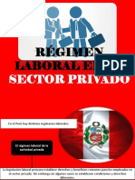 Régimen Laboral en El Sector Privado Ix
