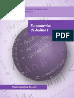 Fundamentos_de_Analise_I.pdf