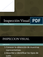 1 Inspeccion Visual.pdf