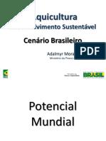 4 Aquicultura Desenvolvimento Sustentavel Cenario Do Brasileiro Adalmyr Borges