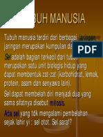 FISIOLOGI MANUSIA.pdf