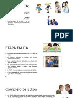 ETAPA-FALICA