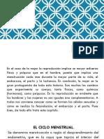 fecundacion humana.pptx