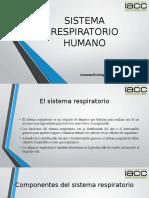 336501008-Anatomofisiologia-Humana-y-Primeros-Auxilios-Control-3.pptx