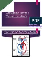 Circulación Mayor Y Circulación Menor