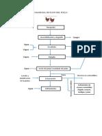 Diagrama de Flujo Del Pollo