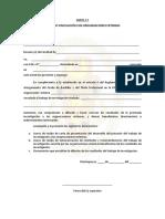 Carta de Autorización Externa y de Autorización de Divulgación