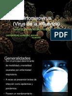 ortomixovirus-121113032542-phpapp02