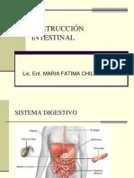 Obstruccion Intestinal[1]