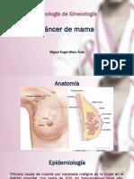 Cáncer de mama.pdf