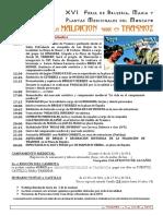 XVI  Feria de Brujeria Actividades.pdf