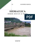 258684297-Hidraulica-Probleme-Rezolvate-Si-Propuse.pdf