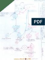 Cours - SVT schéma de synthese immunité - Bac Sciences exp (2010-2011)  Mme ben nasr leila ghodbane.pdf