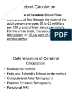 Cerebral Circulation Plenary