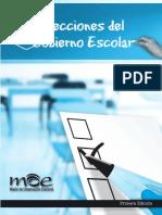 Elecciones Del Gobierno Escolar
