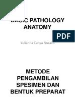 1. Basic Pathology Anatomy