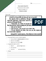 Evaluare Sumativă - Unitatea 6 (Clr)