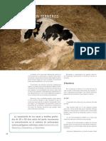 Cría y Salud 26_34-37.pdf