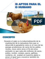 Animales Aptos