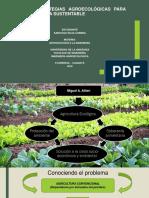 Bases y Estrategias Agroecológicas Para Una Agricultura Sustentable