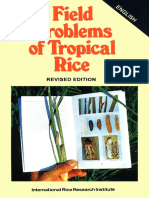 +++ Field problems of tropical rice (IRRI)