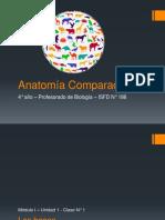 Clase N°1 - Anatomía Comparada