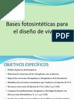 Bases Fotosinteticas (1)