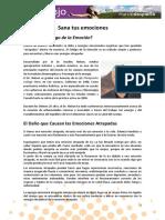 Econsejo-11-Sana-tus-emociones-1.pdf