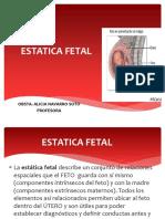 2.Estatica Fetal.pdf