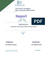rapport conférence.doc