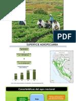 04 Rol de La Agricultura en El Desarrollo Económico