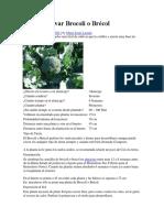 Como Cultivar Brocoli o Brécol.docx