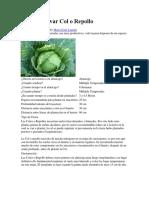 Como Cultivar Col o Repollo.docx